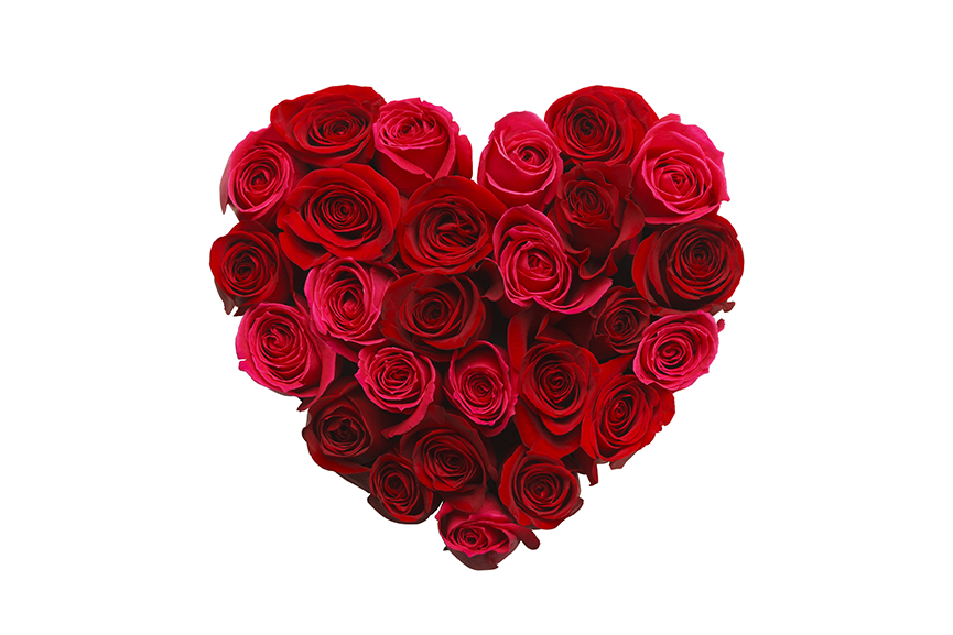 The history of the humble red rose and valentine s day for Buying roses on valentines day